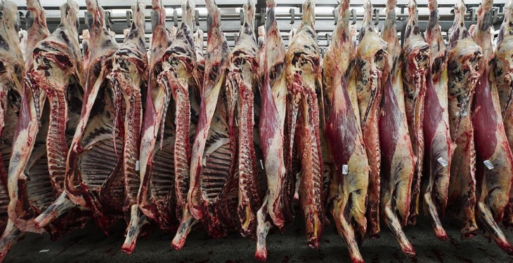 Northern farmers call for accountability on beef specifications