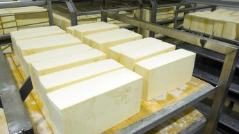 UK cheese manufacturer offering 30p/L (33.5c/L) for February milk