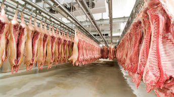 Ireland notifies Commission of intention to mandatory label certain meats