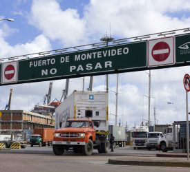 Beef imports may be off the cards for Mercosur deal