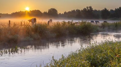 Some farmers may be forced to fence off watercourses by 2021