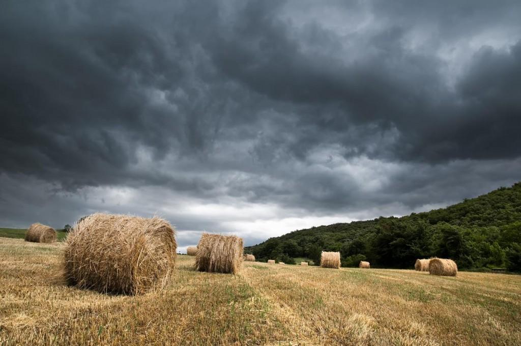 Ireland weather july august-1771