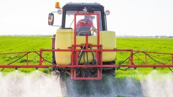 Risk factors associated with pesticides on the decline