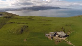 Video: Farm for lease for €1.30 a year includes free sheep flock!
