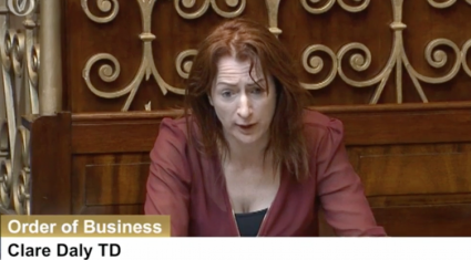 TD Clare Daly calls for outright ban on hare coursing