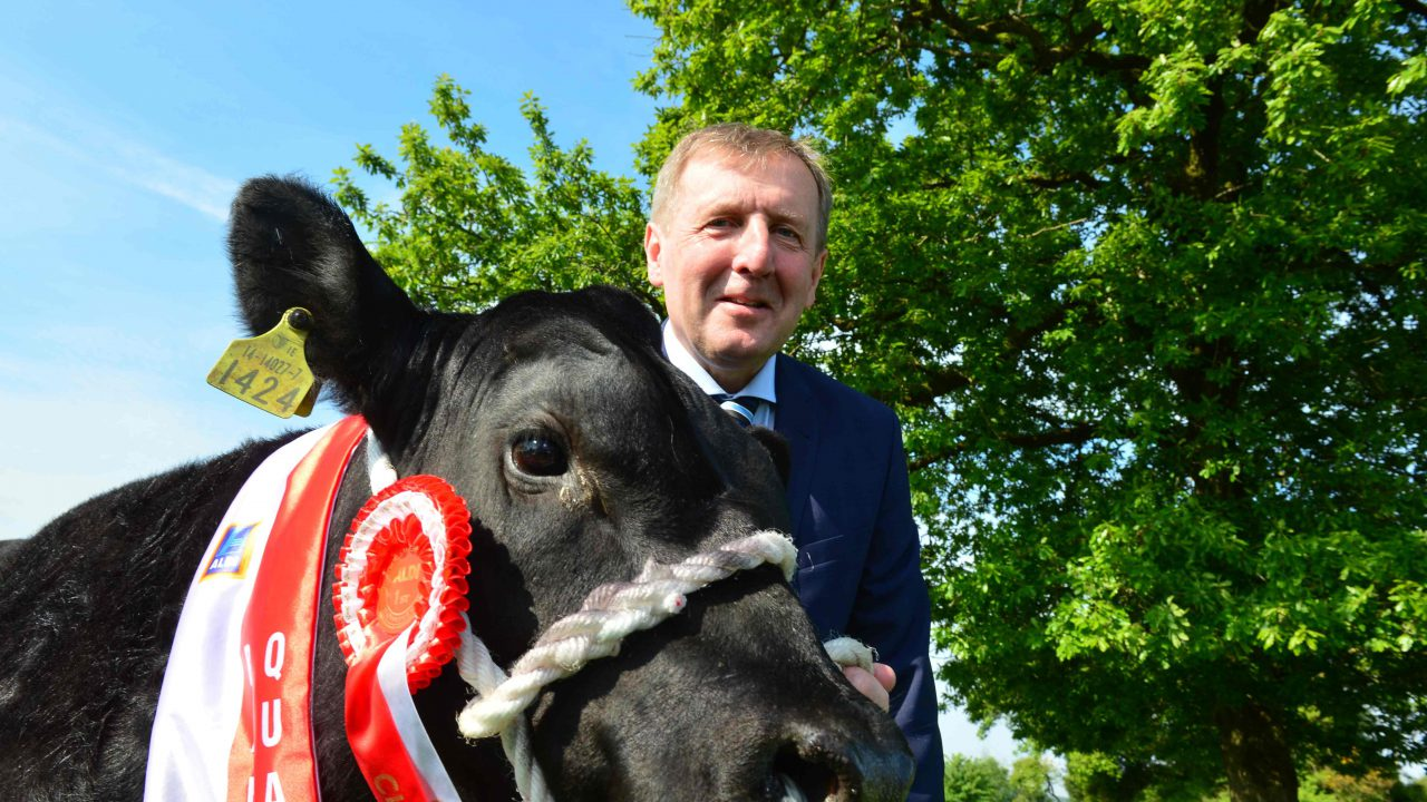 €17,500 up for grabs in the Aldi All Ireland Angus Bull Calf Championship