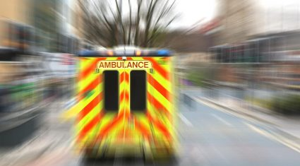 Woman killed in a farm accident involving a cow