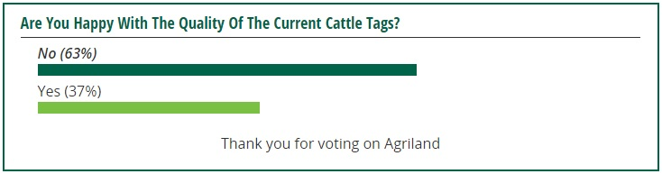 cattle tags poll 1