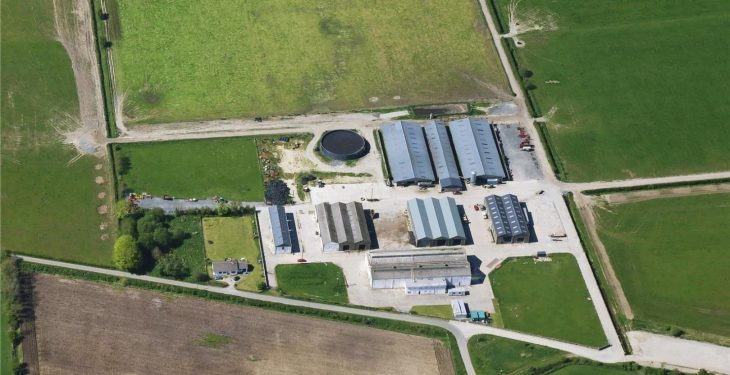Ireland's largest organic dairy farm is up for sale