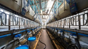 EU milk production growth starting to slow down