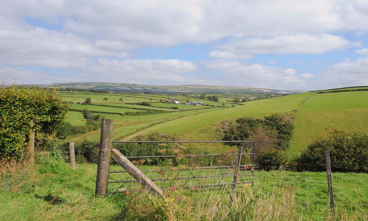 Rural Social Scheme 'faces inevitable decline' if issues aren't addressed