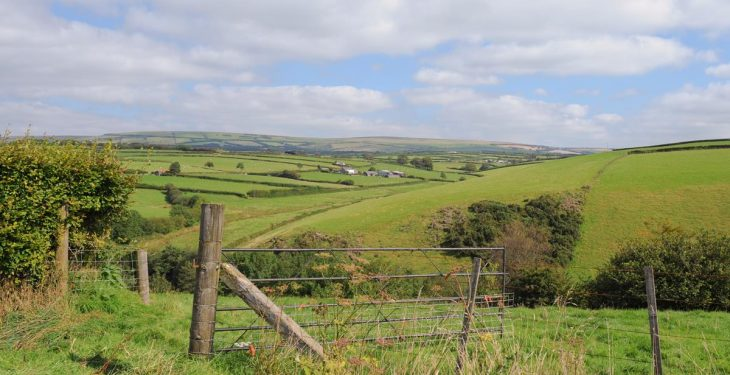 NBP criticism 'reveals glimpse' of how rural Ireland is seen – ICMSA