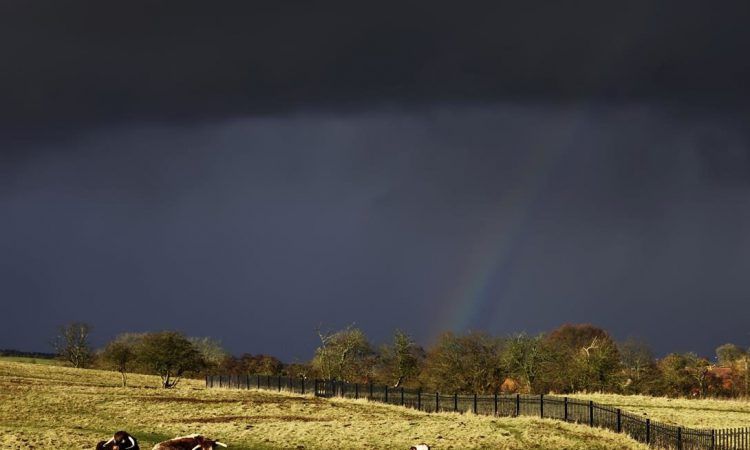 Heavy rain forecast this weekend, with a risk of flooding in places – Met Eireann
