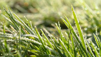 Frosty start to week to give way to spells of rain in coming days