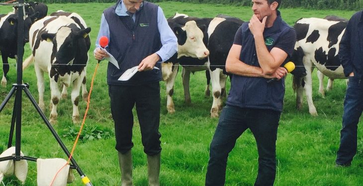 How this part-time beef farmer plans €1,800/ha of output to drive profit