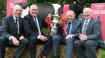 €10,000 up for grabs in Baileys Champion Cow competition