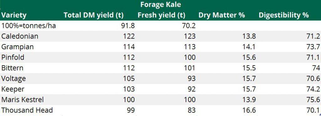 DLF Kale