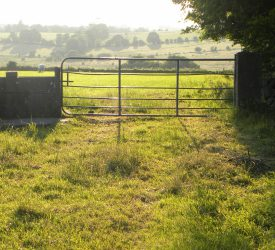 'Urgent need' for 'rights of way' deadline to be extended