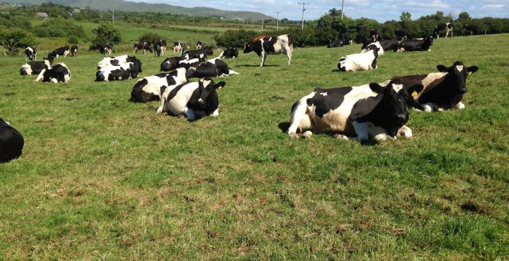 Latest figures show Irish June milk ahead of last year's figures