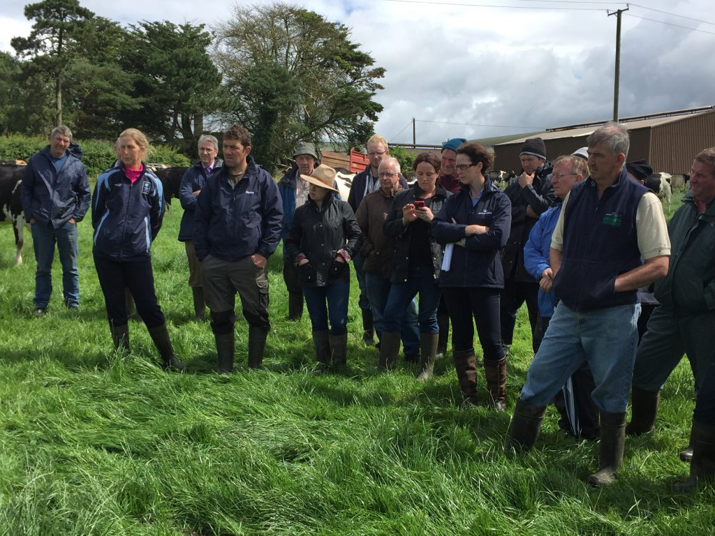 Crowds in attendance at the farm walk