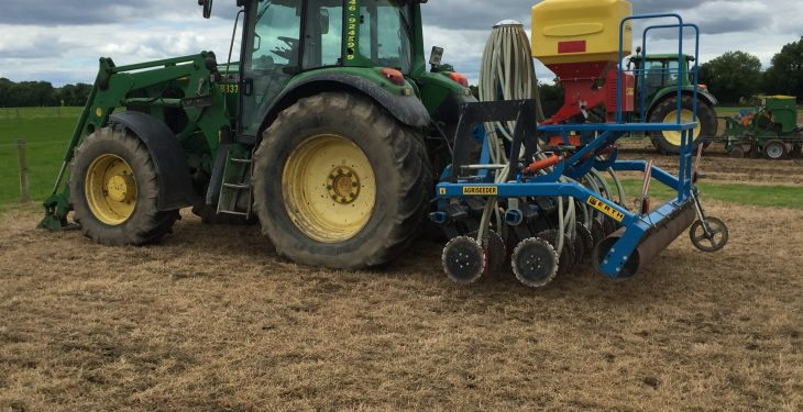 Pics: Thinking of reseeding? Check out the options available here