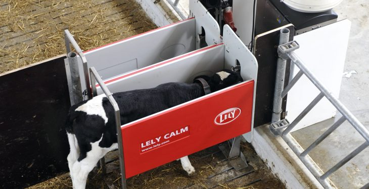 Lely calf feeder designed to help identify calf health problems at an early stage