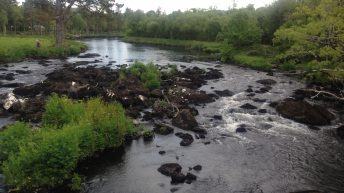 Farmer in the North fined for polluting waterway