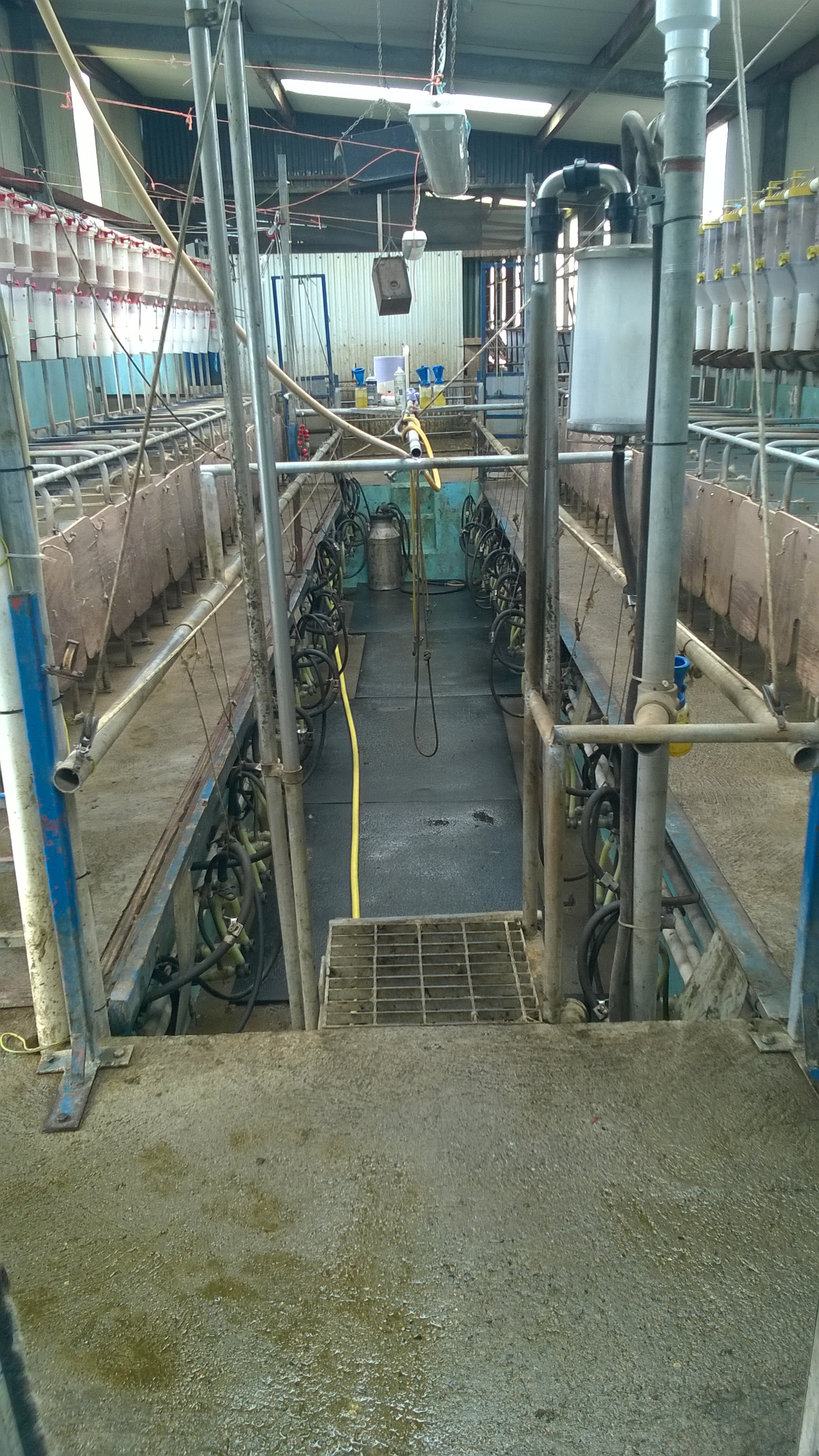 See how one Tipp dairy farmer is getting over €1/L for milk