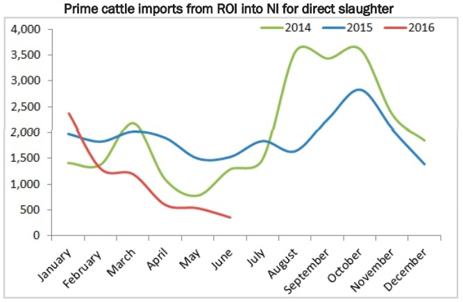 cattle imports 2