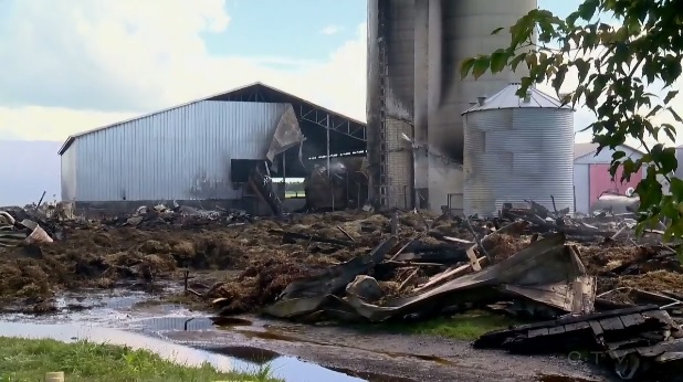 Video: Fire on family-run dairy farm kills 160 cows