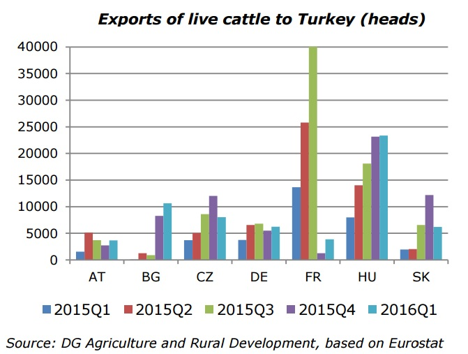 live exports to turkey