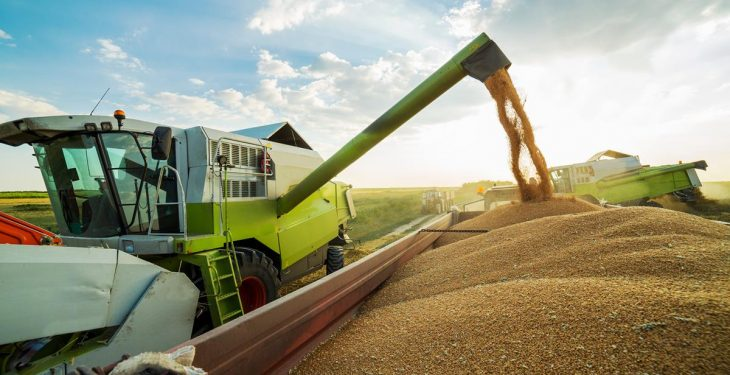 The future of arable: Can we compete with £60/t?