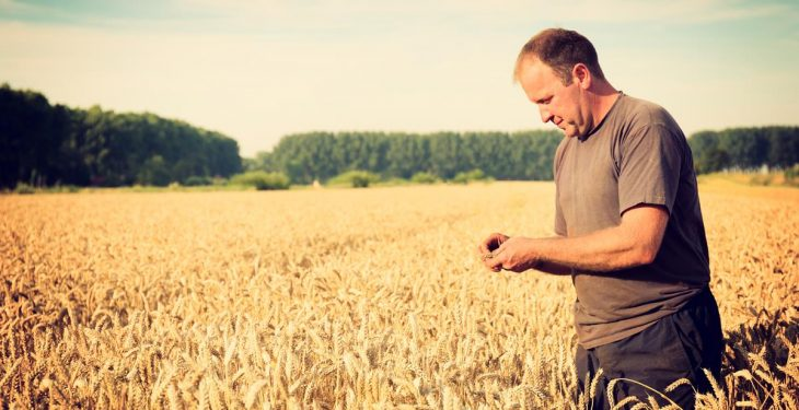 Payments and petitions: Are farmers getting their message across?