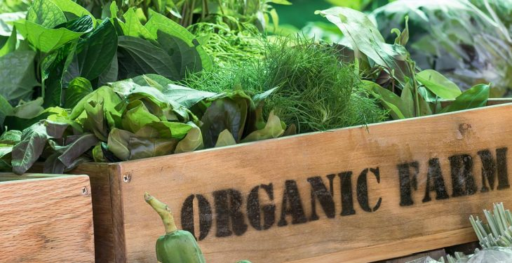 'Current organic funding not good enough to attract more farmers'