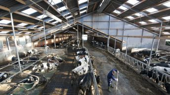 Macra urges young farmers to make farm safety a priority