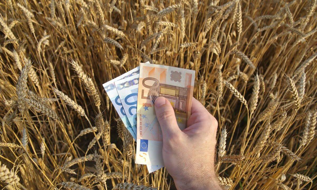 Farm price pressures: Farm input prices increase as output figures drop