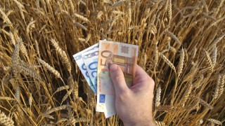 Agri-researchers and companies awarded €6.32m in EU funding