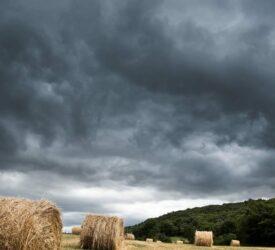 Status Yellow thunderstorm and rain warning issued