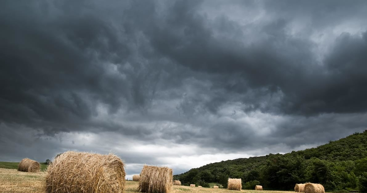 A mixture of sunshine and showers in store this week – Met Eireann
