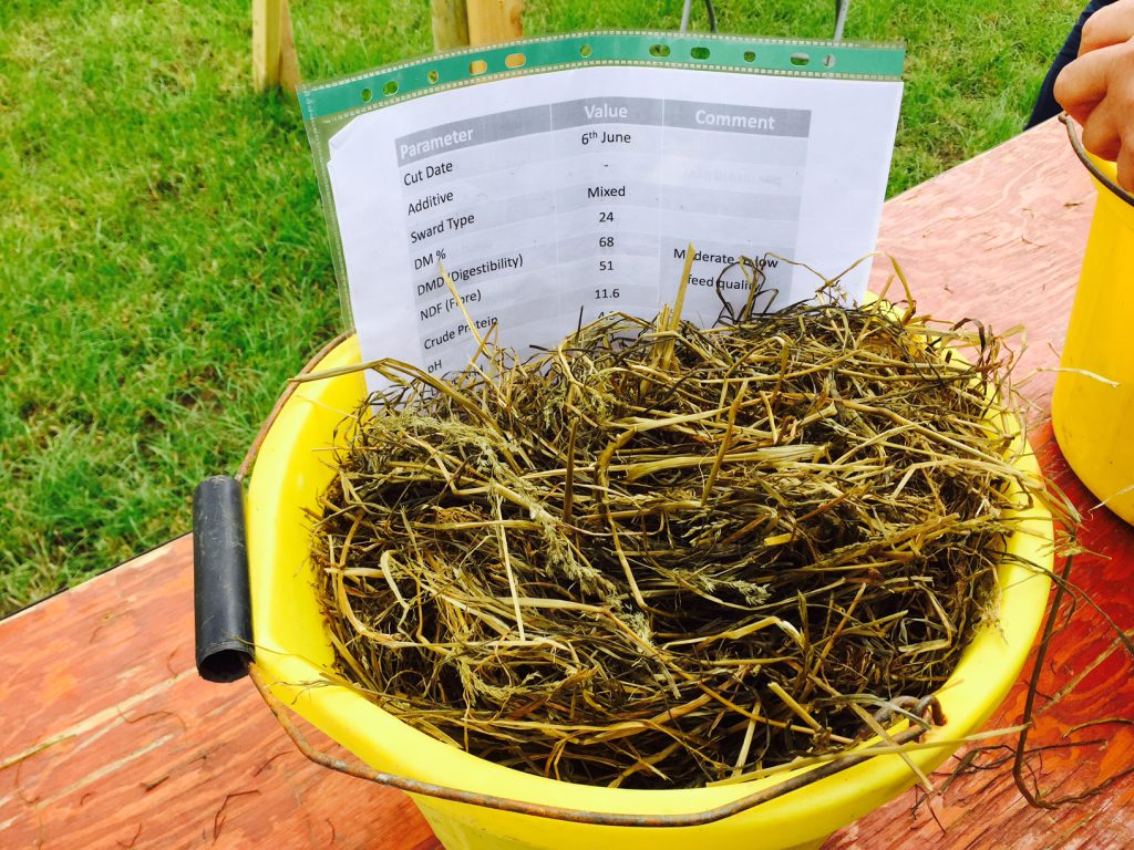 Silage with a high fibre (51%) and a Dry Matter Digestibility of 68%