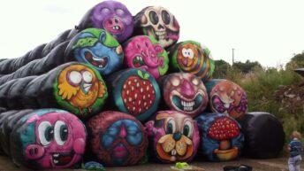 Pics: Graffiti artist transforms plain bales into amazing artwork