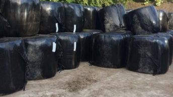 10 steps to take in order to reduce damage to silage bales