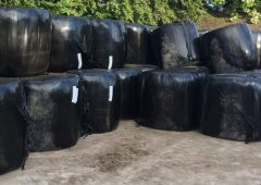 Roscommon farmer dies in silage-related accident