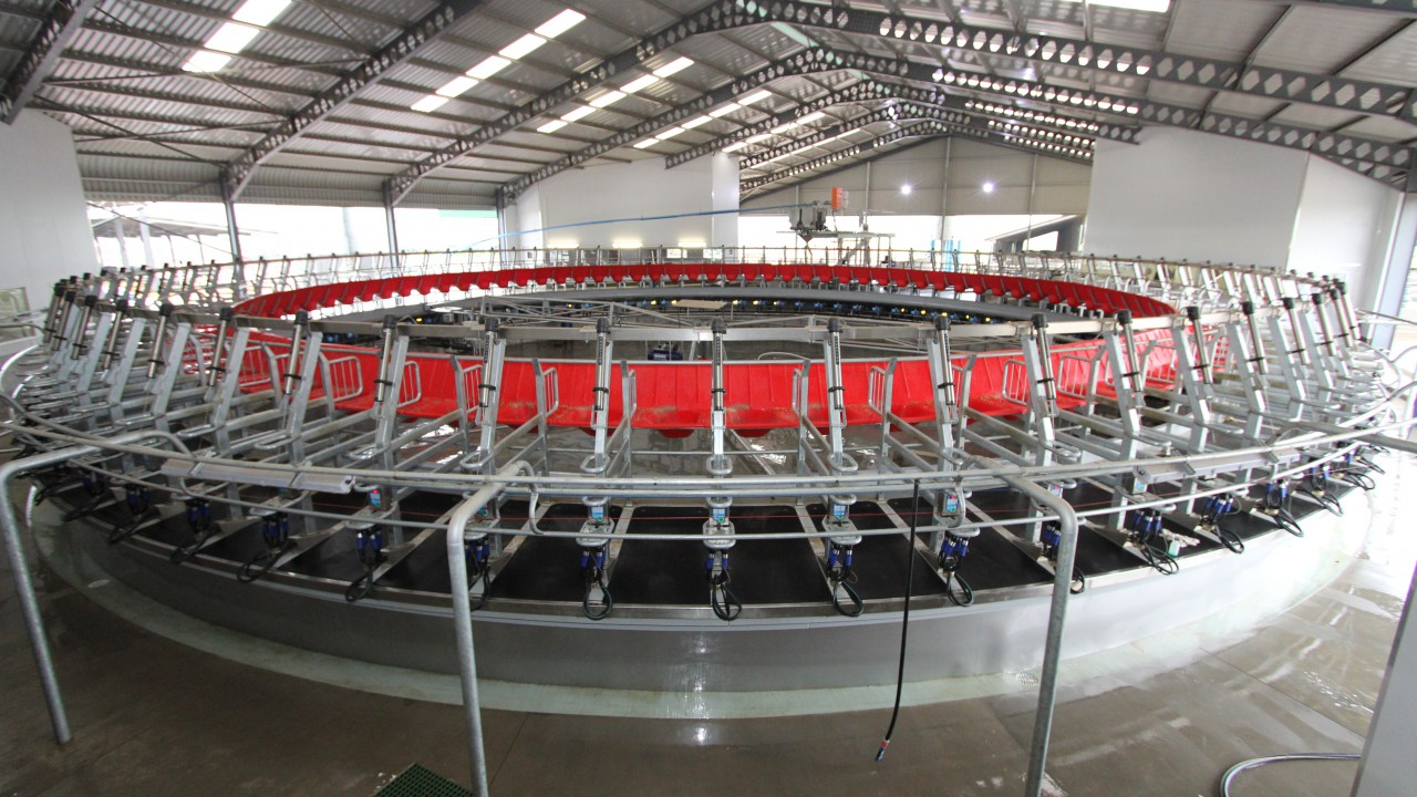 New Zealand company launch rotary dairy platform in Ireland and the UK