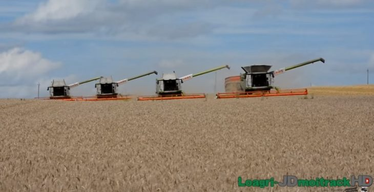 Amazing footage shows four Claas combines working together for the harvest