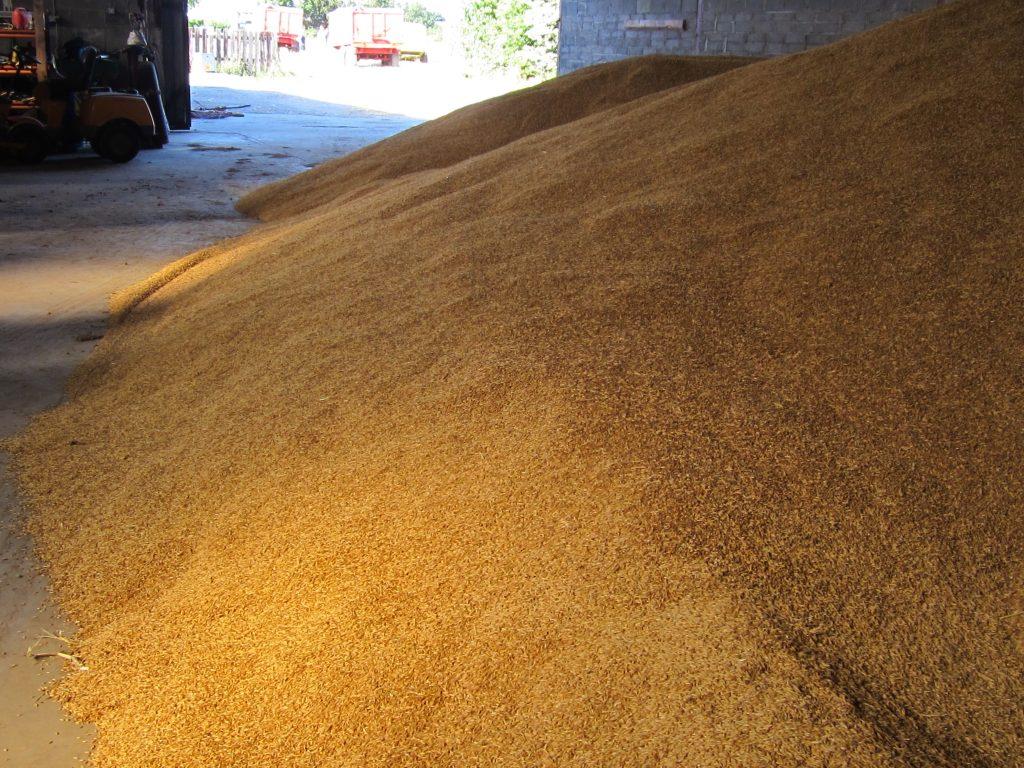 Grain, Tillage,