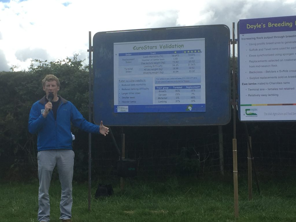 Sheep Ireland's Eamon Wall speaking at the farm walk
