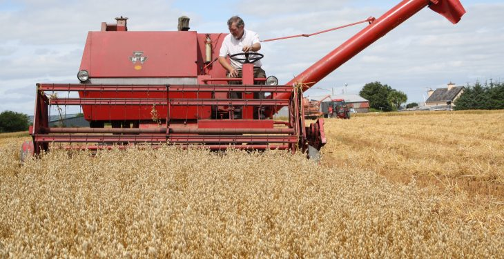 See machinery from the 1940s put through its paces at the Autumn Harvest Extravaganza