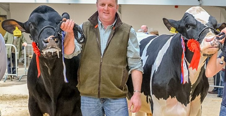 Final call for entries to this year's Baileys Cow competition