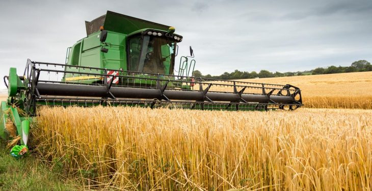 First official estimates puts overall 2016 Irish cereal harvest down 15%